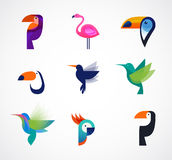 Tropical birds - set of vector icons Stock Photos