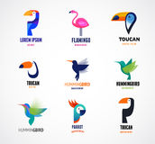 Tropical birds - set of vector icons Royalty Free Stock Photos