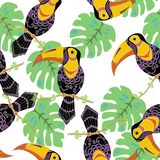 Tropical Birds Toucans Seamless Pattern on White , Rainforest Tropical Leaves Repeated Pattern Backround royalty free illustration