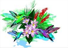 Tropical birds. Vector stock photo