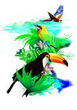 Tropical birds. (Vector) Royalty Free Stock Image