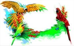 Tropical birds. (Vector) Royalty Free Stock Photography
