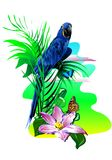 Tropical birds. (Vector) Royalty Free Stock Images