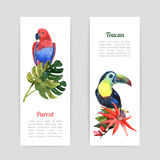 Tropical birds watercolor banners set Stock Image