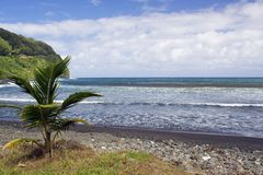 Tropical Black Sand Beach Royalty Free Stock Photos