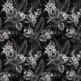 Tropical Black and White Pattern Stock Images