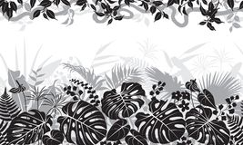 Tropical Black and White Pattern stock illustration