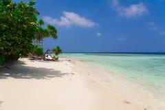 Maldives, white sand, palms royalty free stock image