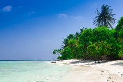 Maldives, white sand, palms stock images