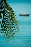 Tropical boat. Tropical scenery with palmtree leaf and a boat Stock Images