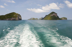 Free Tropical Boat Wake Royalty Free Stock Images - 24201479