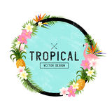Tropical Border Design. Tropical hand drawn elements including bird of paradise flower, flamingo bird and tropical floral elements Royalty Free Stock Images