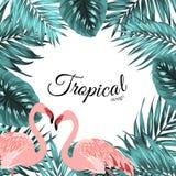 Tropical border frame jungle leaves flamingo birds Royalty Free Stock Images