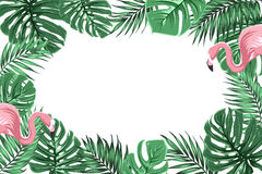 Tropical border frame with jungle leaves flamingos. Tropical exotic border frame template with bright green jungle palm tree monstera leaves and pink flamingo Royalty Free Stock Photo
