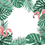Tropical border frame leaves pink flamingo birds. Exotic tropical border frame template with turquoise green jungle palm tree monstera leaves and pink flamingo Royalty Free Stock Images