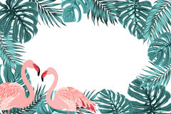 Tropical border frame turquoise leaves flamingo Royalty Free Stock Images