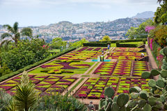 Tropical Botanical Garden in Funchal, Madeira island, Portugal Royalty Free Stock Image