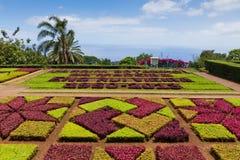 Tropical Botanical Garden in Funchal, Madeira island, Portugal Royalty Free Stock Photos