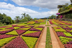 Tropical Botanical Garden in Funchal, Madeira island, Portugal Royalty Free Stock Photography