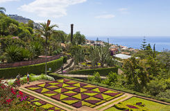 Tropical Botanical Garden in Funchal, Madeira island, Portugal Stock Image