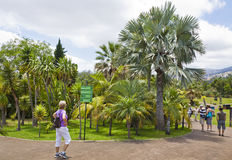 Tropical Botanical Garden in Funchal, Madeira island, Portugal Stock Images