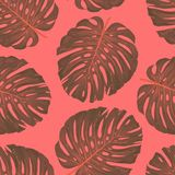 Tropical botanical plants, background with leaves of coconut and banana design card jungle leaf background design royalty free stock photos