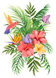 Tropical bouquet with palm leaves, exotic flowers, butterflies and hummingbirds stock illustration
