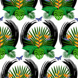 Tropical Bouquet Seamless Pattern. Seamless pattern of tropical bouquet with flowers, leaves and butterfly. Exotic floral wallpaper with abstract black brash Royalty Free Stock Image