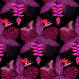 Tropical Bouquet Seamless Pattern Stock Image