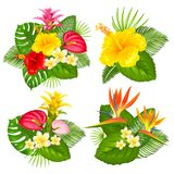 Tropical bouquet set Royalty Free Stock Photo