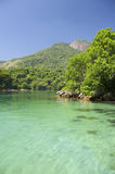 Tropical Brazilian Lagoon Ilha Grande Brazil Stock Images