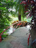 Tropical Bridge. A bridge over a stream surrounded by tropical foliage stock photos