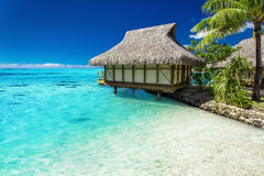 Tropical bungalow and palm tree next to amazing blue lagoon Stock Image