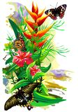Tropical Butterflies in colors on a white background. (Vector) Stock Photo