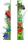 Tropical butterflies in leaves and flowers with a white banner. royalty free stock photography