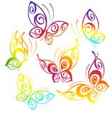 Tropical Butterfly royalty free illustration