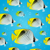 Tropical butterflyfish - Seamless pattern Stock Photo