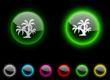 Tropical button. Royalty Free Stock Image
