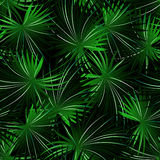 Tropical cabbage palm in a seamless pattern Stock Image