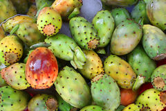 Tropical cactus fruits stock image