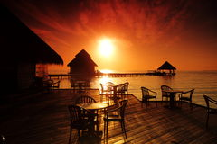 Tropical cafe Royalty Free Stock Images