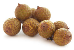 Tropical Calamus palm fruits Royalty Free Stock Photo