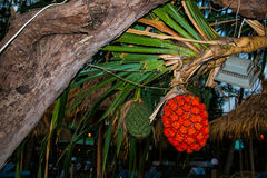 Tropical Cambodian fruit Royalty Free Stock Photos
