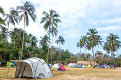 Tropical Campsite. Campsite in a grove of palm trees in Tayrona National Park near Santa Marta, Colombia stock image