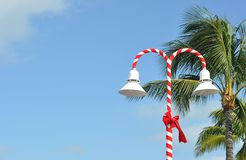 Tropical Candy Cane Street Lamp Stock Photos