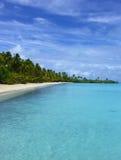Tropical Cape. Palm Trees on Beach stock photos