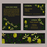 Tropical card set for different invitations Royalty Free Stock Photo