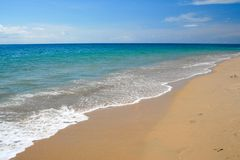 Tropical caribbean beach royalty free stock images