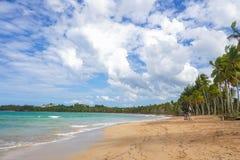 Tropical caribbean beach Stock Photo