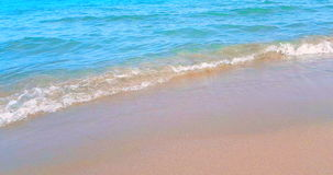 Tropical caribbean beach sea with gold sand, holiday, relax and travel stock footage